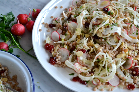 Shaved fennel, radish and israeli couscous salad